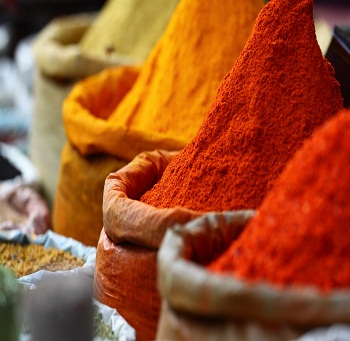Indian Spices Powder for bulk export