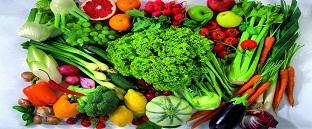 Fresh Vegetables Exporter
